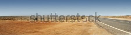 Australian Outback Road Panorama Stock photo © THP