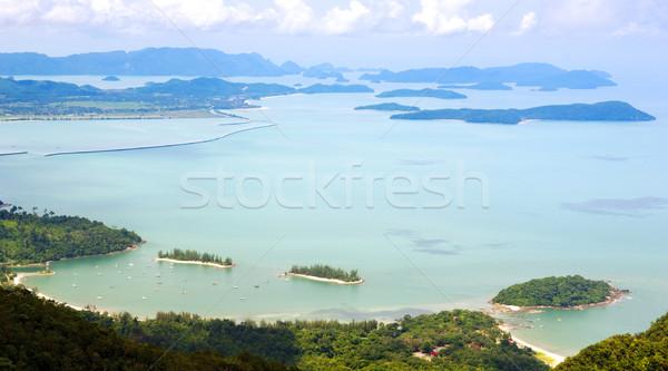 тропические мнение высокий лет Сток-фото © THP
