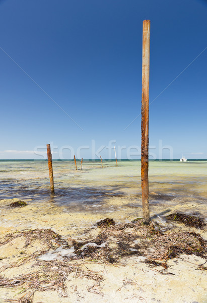 Stock photo: Ocean Poles