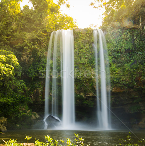 Misol Ha Waterfall Palenque Stock photo © THP