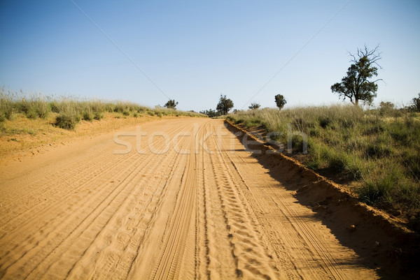 Outback Road Stock photo © THP