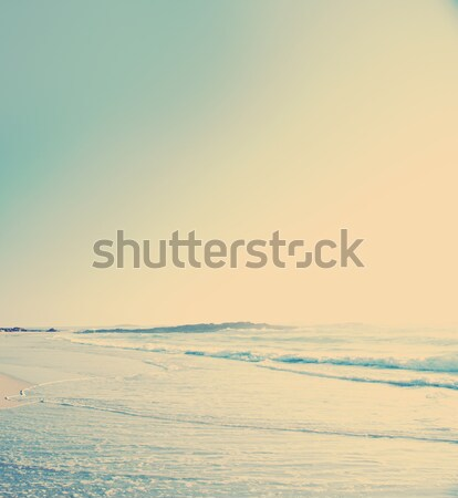Bağbozumu plaj fotoğraf kum dalgalar gökyüzü Stok fotoğraf © THP