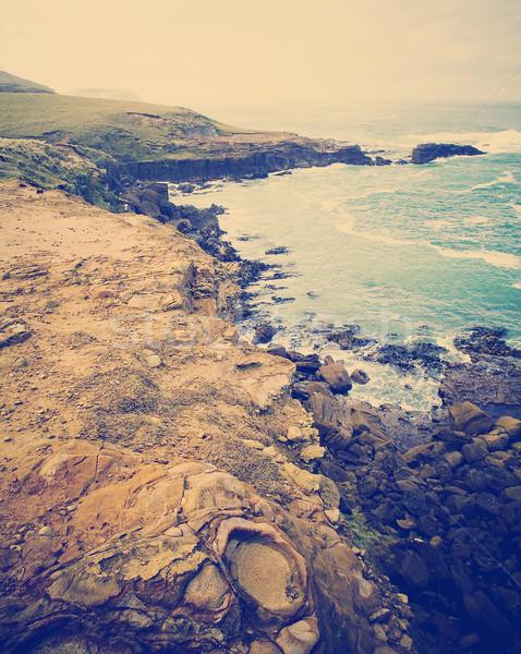 Rough Coast Stock photo © THP
