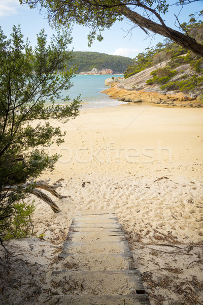 Stock photo: Wooden Path Onto Refuge Cove