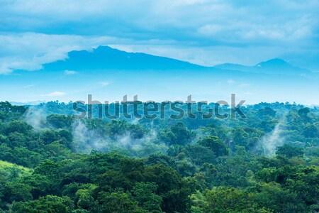 México selva paisagem cênico montanhas horizonte Foto stock © THP
