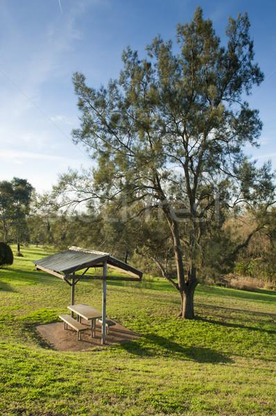 Onderdak klein groene achtergrond bomen bladeren Stockfoto © THP
