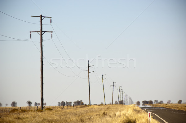 Powerlines Heat Haze Stock photo © THP