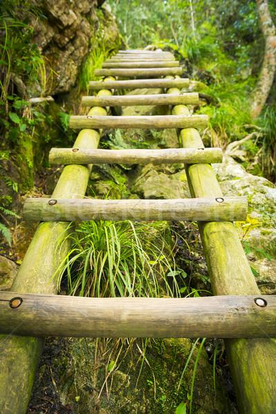 походов лестнице ведущий вверх скелет таблице Сток-фото © THP