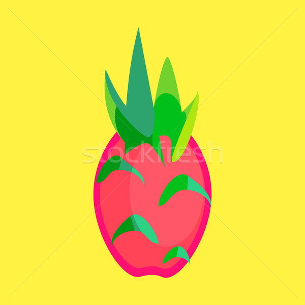 Dragon Fruit Minimalism Art Vector Stock photo © THP