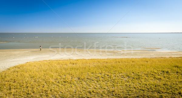Makgadikgadi Pan Lake Stock photo © THP
