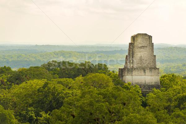 Ruínas Guatemala tropical selva natureza viajar Foto stock © THP