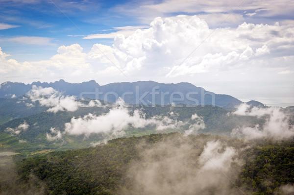 туман лес Остров Лангкави Малайзия облака Сток-фото © THP