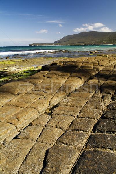 Tessellated Pavement Stock photo © THP