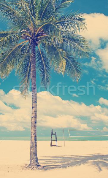 Palmeira praia praia tropical limpar areia voleibol Foto stock © THP