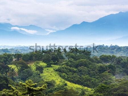 Messico giungla panorama scenico montagna orizzonte Foto d'archivio © THP