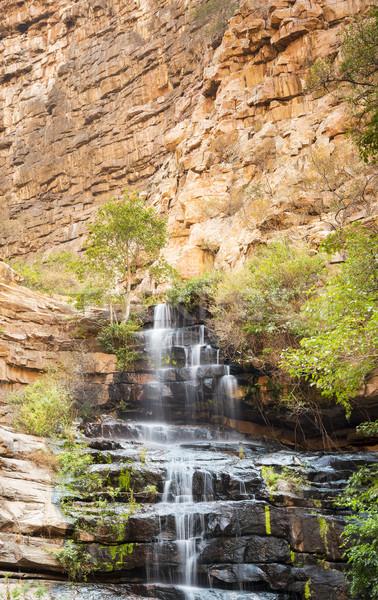 Ботсвана водопада Африка вниз Сток-фото © THP