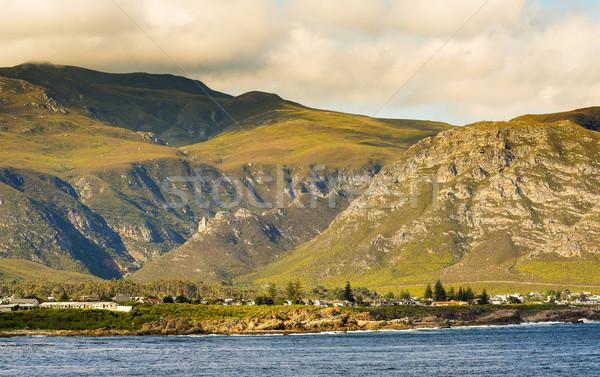 Doğa rezerv arkasında Güney Afrika plaj arka plan Stok fotoğraf © THP