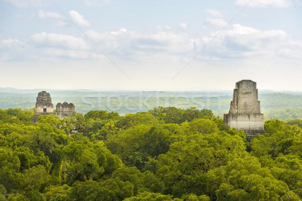 парка Гватемала руин джунгли известный Сток-фото © THP