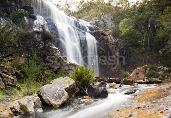 MacKenzie Falls, Grampians Stock photo © THP