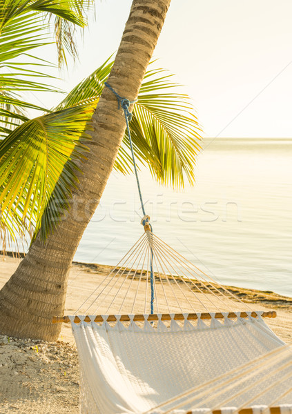 Tranquil Beach Hammock Stock photo © THP