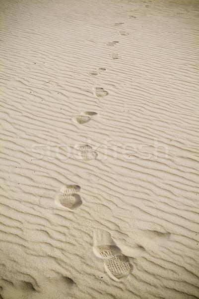 Kum büyük sahil plaj okyanus Stok fotoğraf © THP