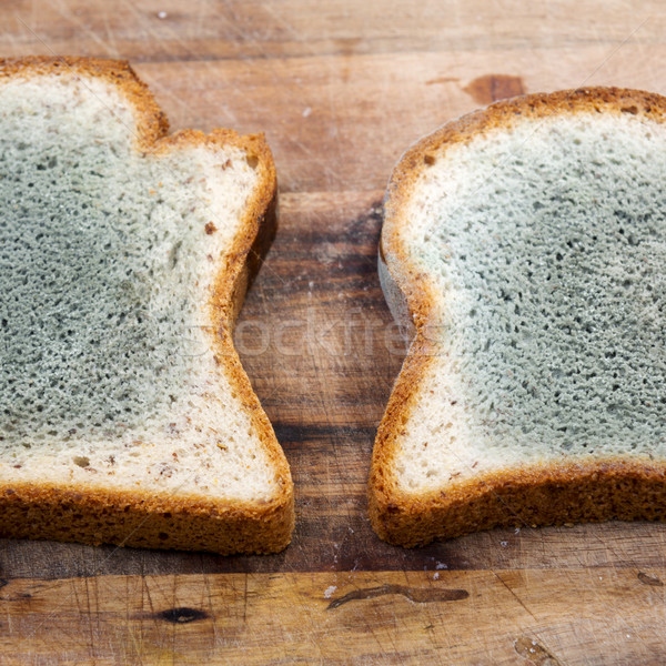 Mouldy Bread Stock photo © THP