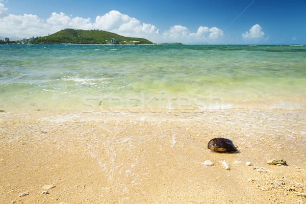 Noumea New Caledonia Beach Stock photo © THP