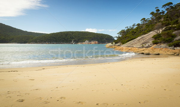 Refuge Cove Coastline Stock photo © THP