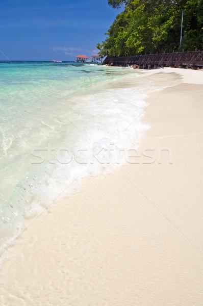 Paraíso praia perfeito areia branca localização água Foto stock © THP