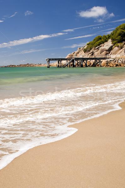 Ausztrál tengerpart patkó győztes kikötő Dél-Ausztrália Stock fotó © THP