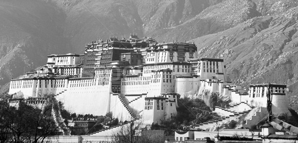 Paleis tibet home architectuur asian asia Stockfoto © THP