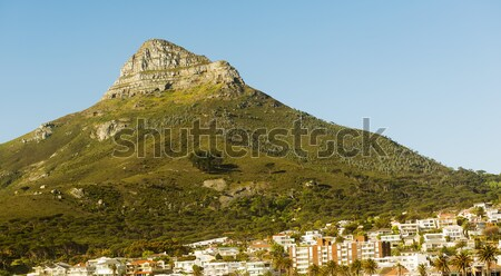 Lions Head Over Cape Town City Stock photo © THP