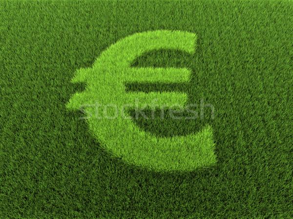 Grass Euro Sign Stock photo © ThreeArt