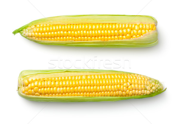 Stock photo: Corn Ears Isolated on White Background