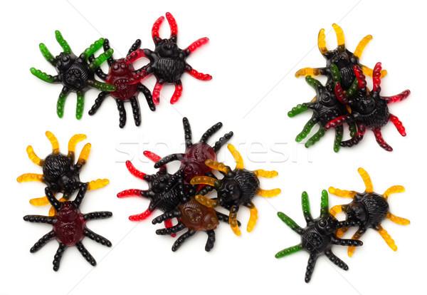 ストックフォト: ハロウィン · クモ · 孤立した · 白 · 先頭