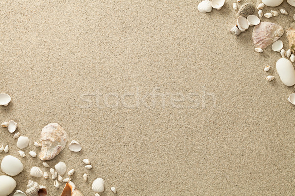 Sandy Beach Background with Shells and Stones Stock photo © ThreeArt