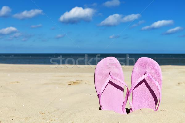 Strand roze alleen zandstrand zomer Stockfoto © ThreeArt