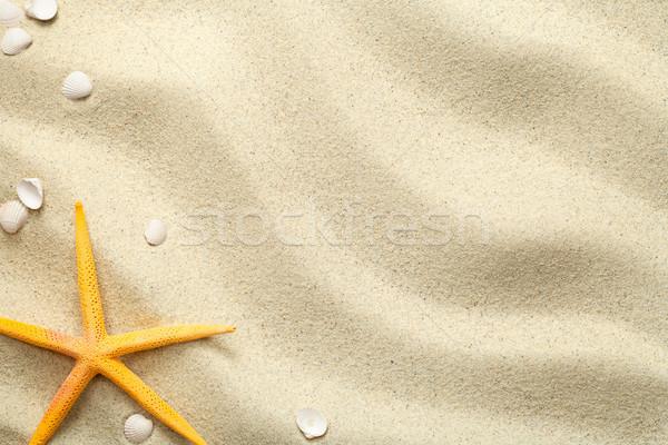 песок Starfish снарядов пляж текстуры копия пространства Сток-фото © ThreeArt