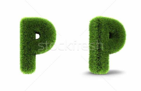 Grass Letter P Stock photo © ThreeArt