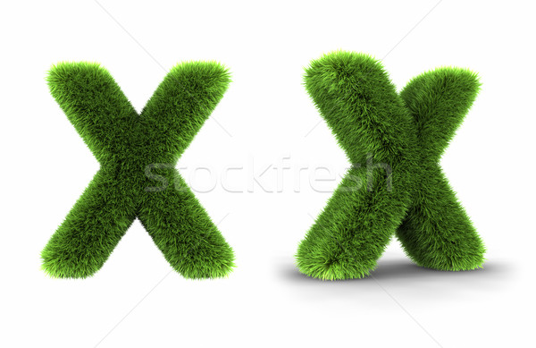Grass Letter X Stock photo © ThreeArt