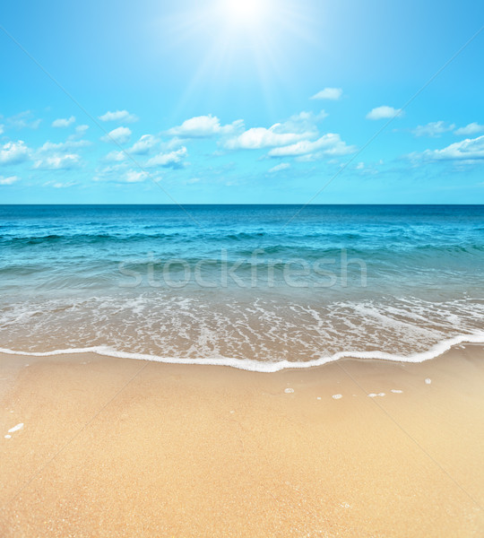 Beach Stock photo © ThreeArt