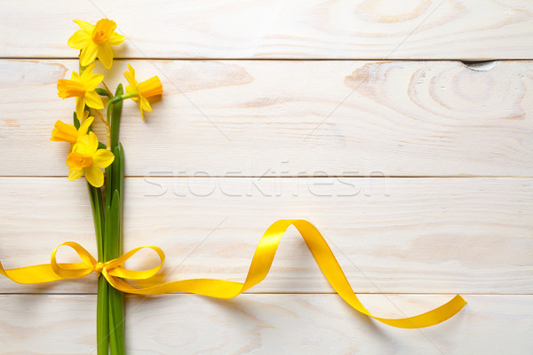 Spring, Easter Background with Daffodil Flowers Stock photo © ThreeArt