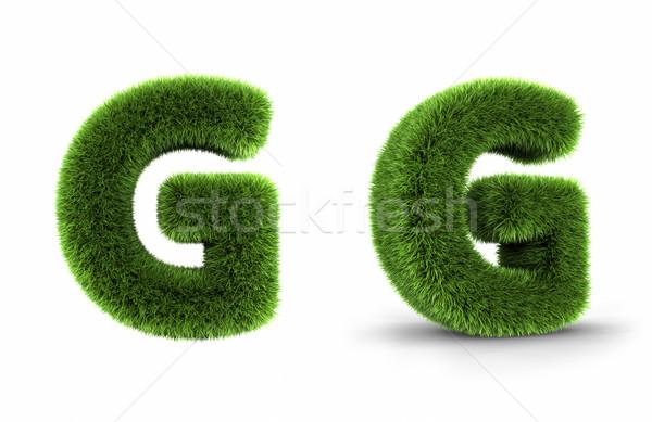 Grass Letter G Stock photo © ThreeArt