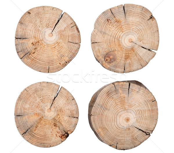 Wooden Stump Isolated on White Background Stock photo © ThreeArt