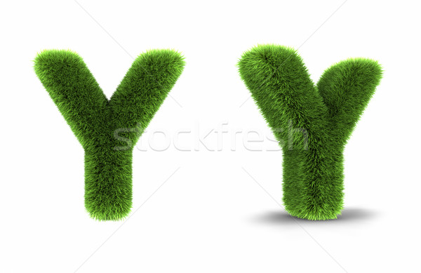 Grass Letter Y Stock photo © ThreeArt