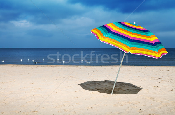 Beach Umbrella Stock photo © ThreeArt