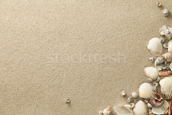 Spiaggia di sabbia conchiglie copia spazio top view spiaggia Foto d'archivio © ThreeArt