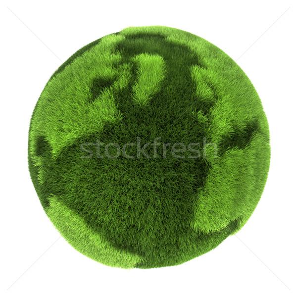 Grass Earth Stock photo © ThreeArt