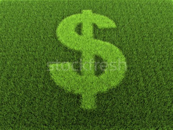 Grass Dollar Sign Stock photo © ThreeArt