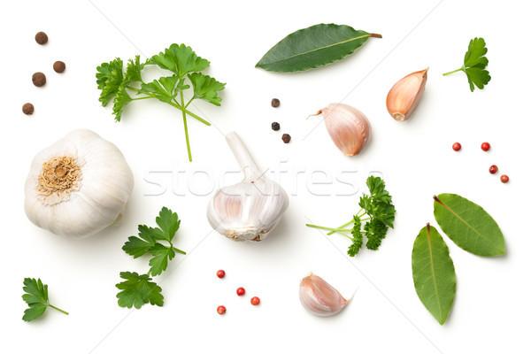 чеснока листьев петрушка перец изолированный белый Сток-фото © ThreeArt